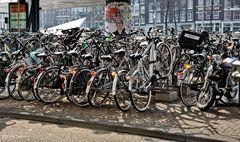 Amsterdam, Drahtesel oder 5 € die Stunde Parkgebühr