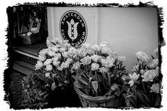 Amsterdam Tulip Museum_