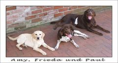 Amy, Frieda und Paul