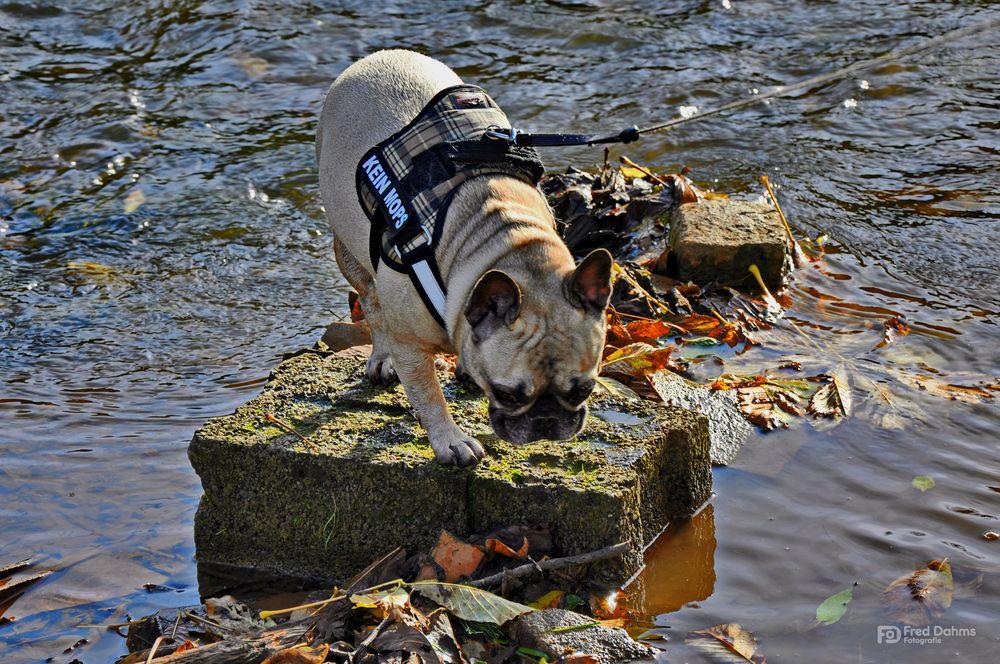Amy, ganz schön kalt das Wasser