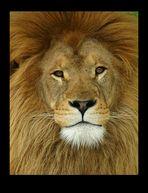 An African King