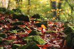 An autumn poem