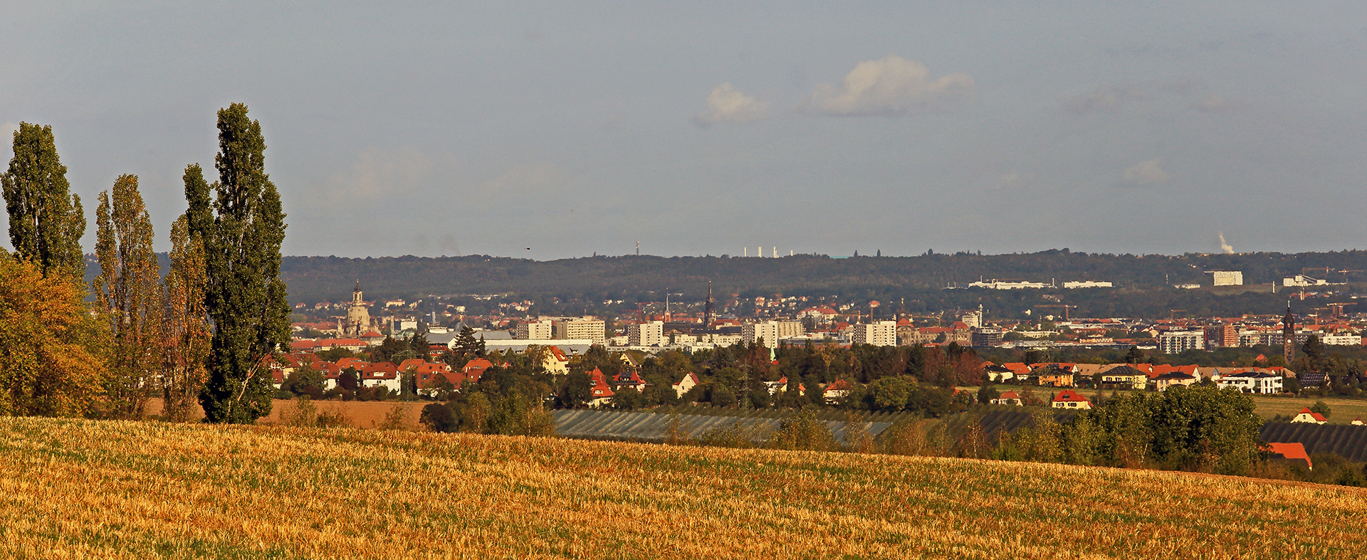 An den Bäumen vorbei geschaut bis ins Zentrum von Dresden...