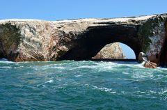 An den Islas Ballestas vor der Halbinsel Paracas (1)