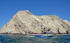 An den Islas Ballestas vor der Halbinsel Paracas (5)