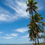An der Costa dos Coqueiros