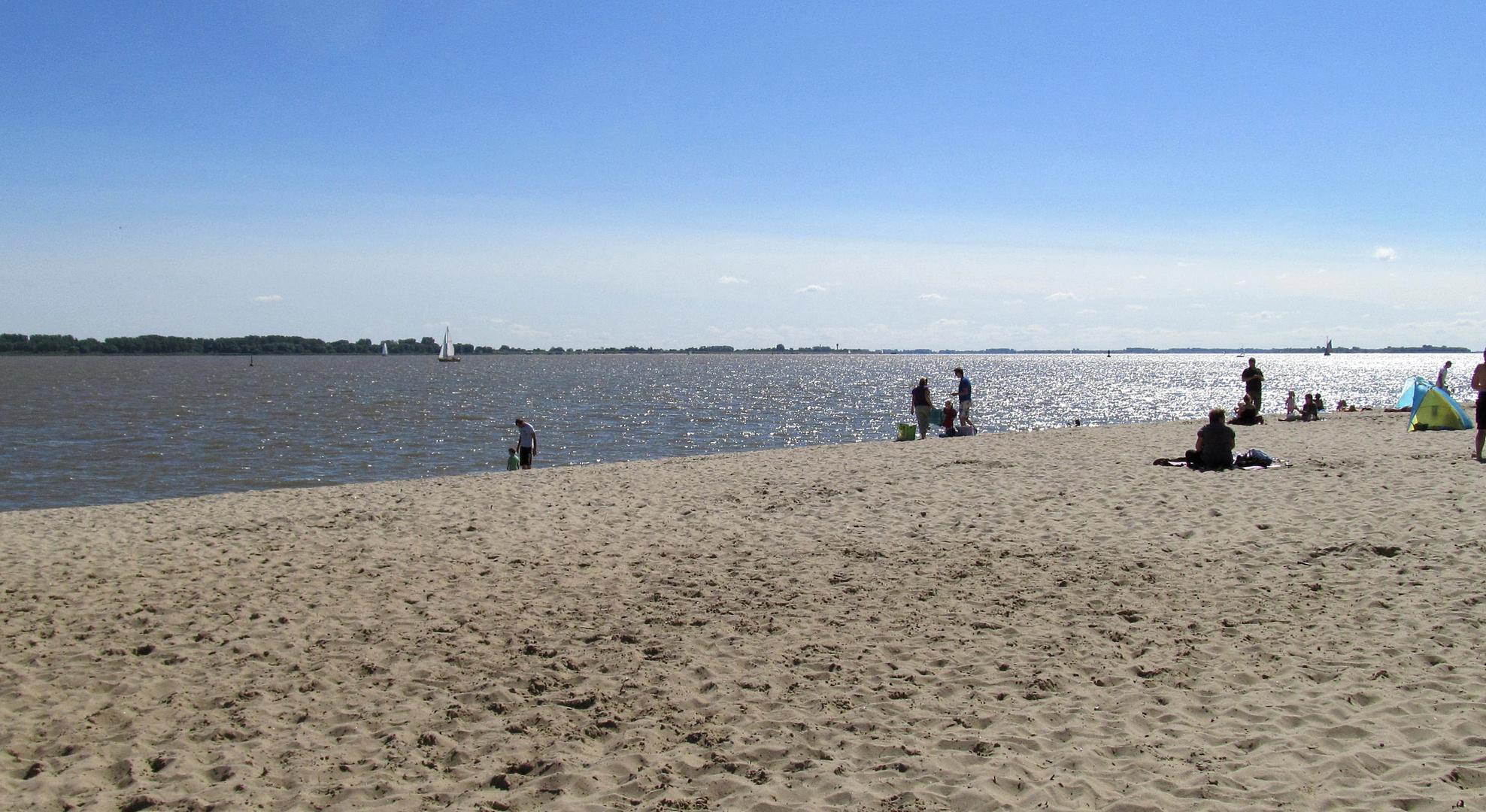 An der Elbe auf Krautsand