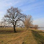 An der Elbe zwischen Sachsen und Sachsen-Anhalt
