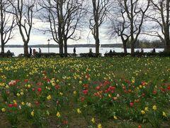 an der Greenwich Promenade