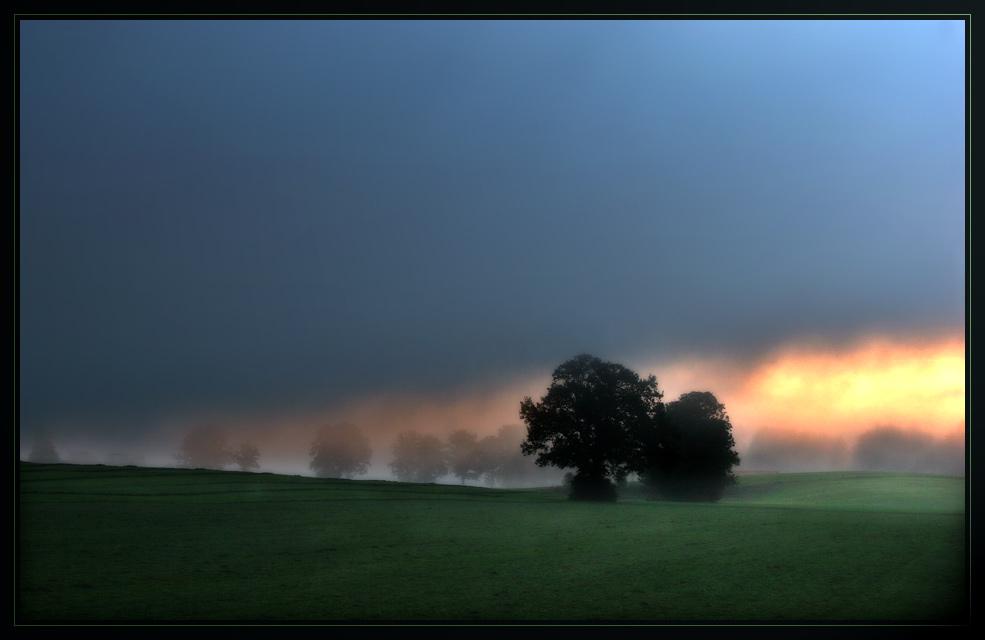 An der Grenze zwischen Nebel und Licht