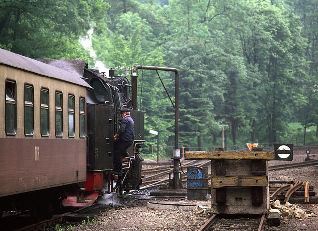 An der Harzquerbahn - 3