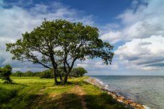 An der Küste von Dänemark (Insel Langeland)