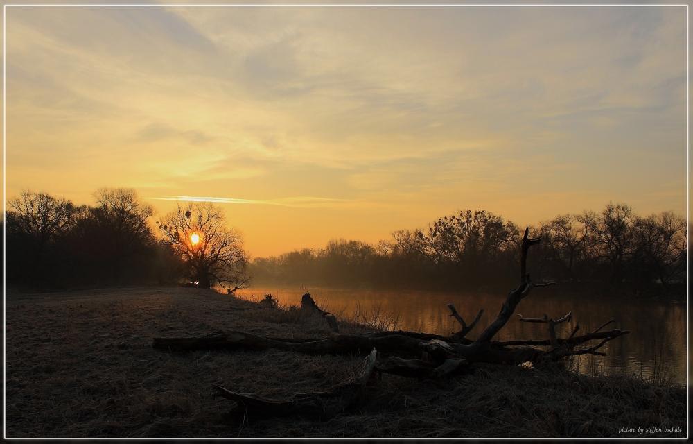 An der Mulde im vorderen Tiergarten in Dessau  - 1 -