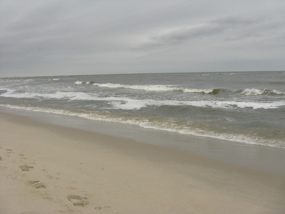 An der Niederländischen Küste