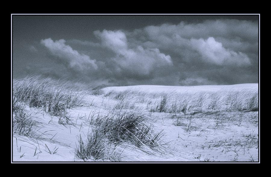 AN der Nordsee bei Langeoog