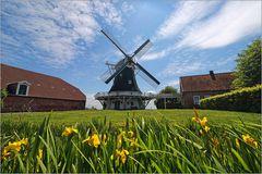 An der Seriemer Mühle...