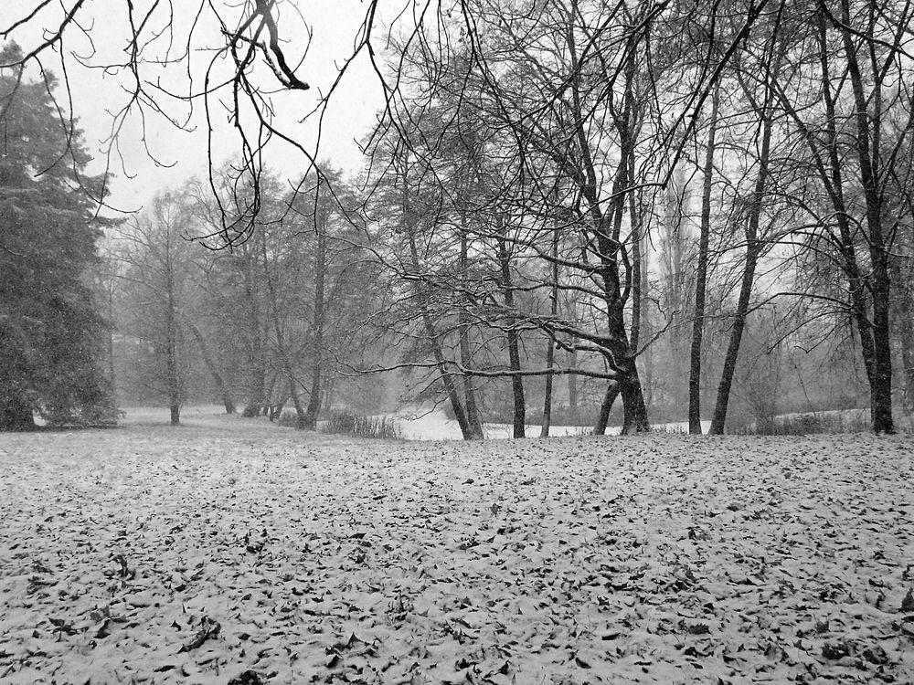 An der Spree im Winter