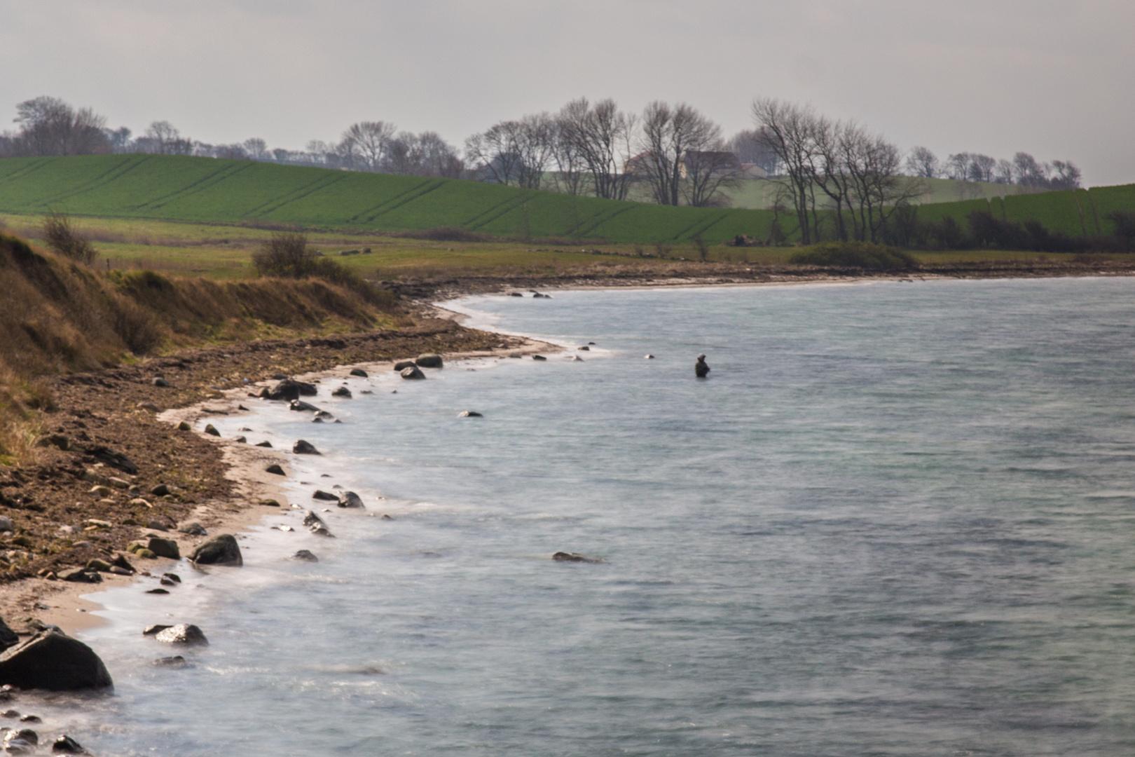An der Steilküste von Kegnæs
