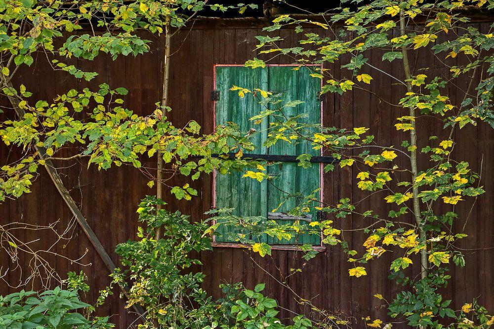 An der Waldhütte...
