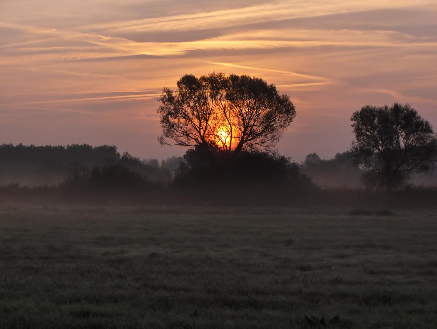 An einem frühen Morgen
