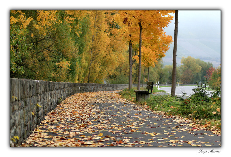 An einem Herbstmorgen...