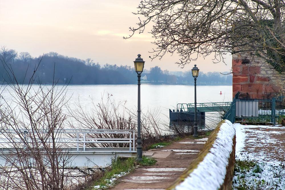 An einem kalten Januartag - Eltville - Rheinufer