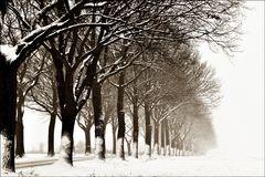 an einem kalten Wintertag