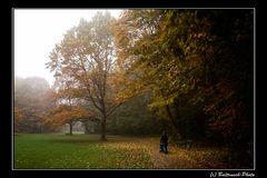 An einem nebeligen Herbstmorgen...