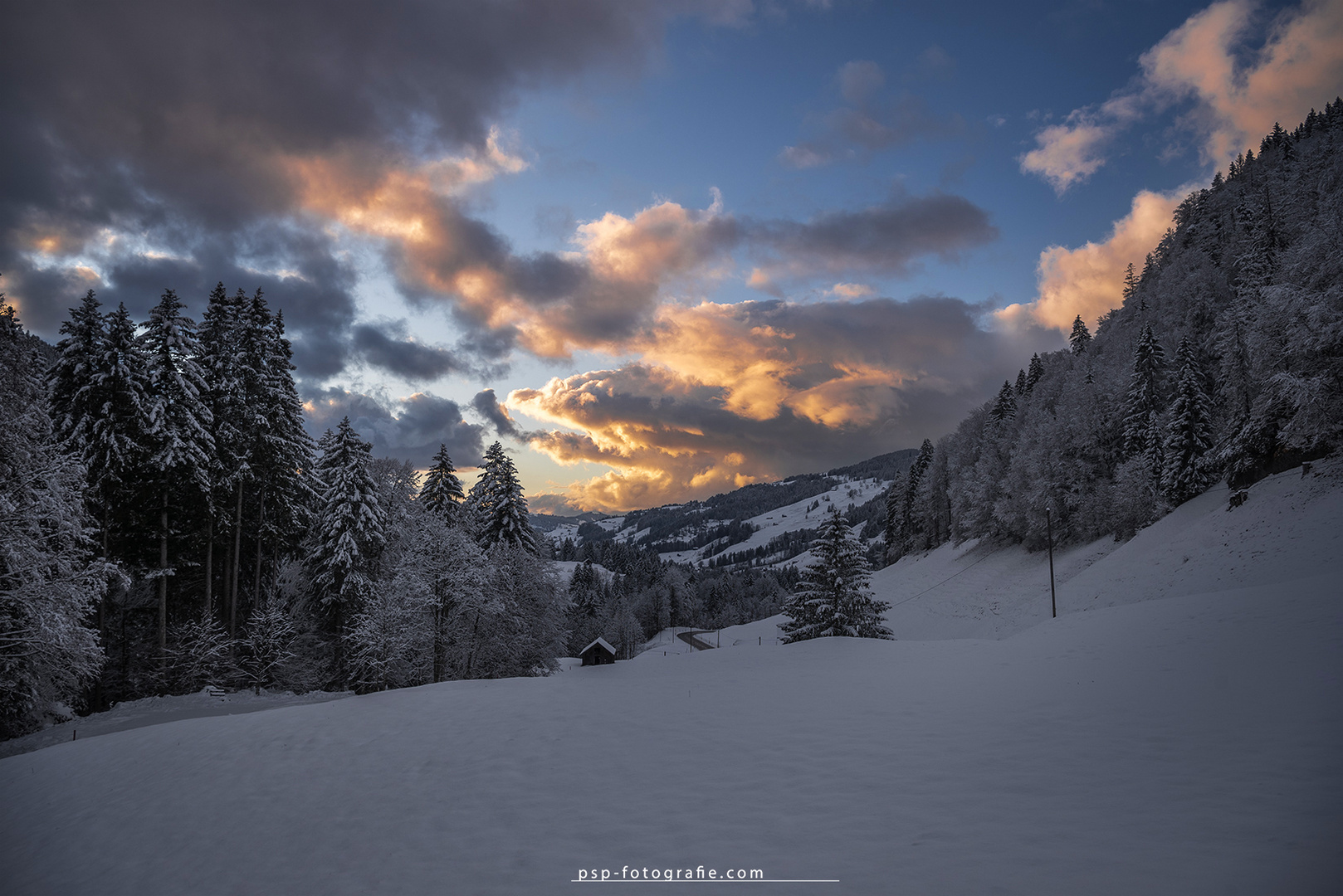 ... an evening in the snow ...