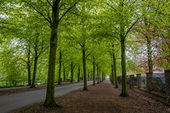 An Münsters Promenade
