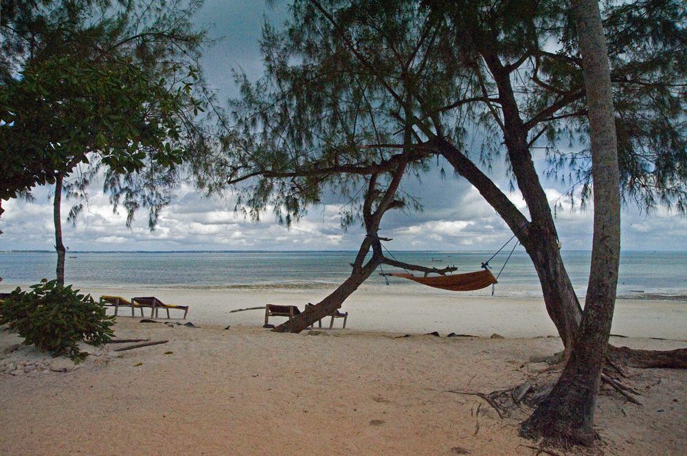 An Sansibars Küste ~ 4 ~