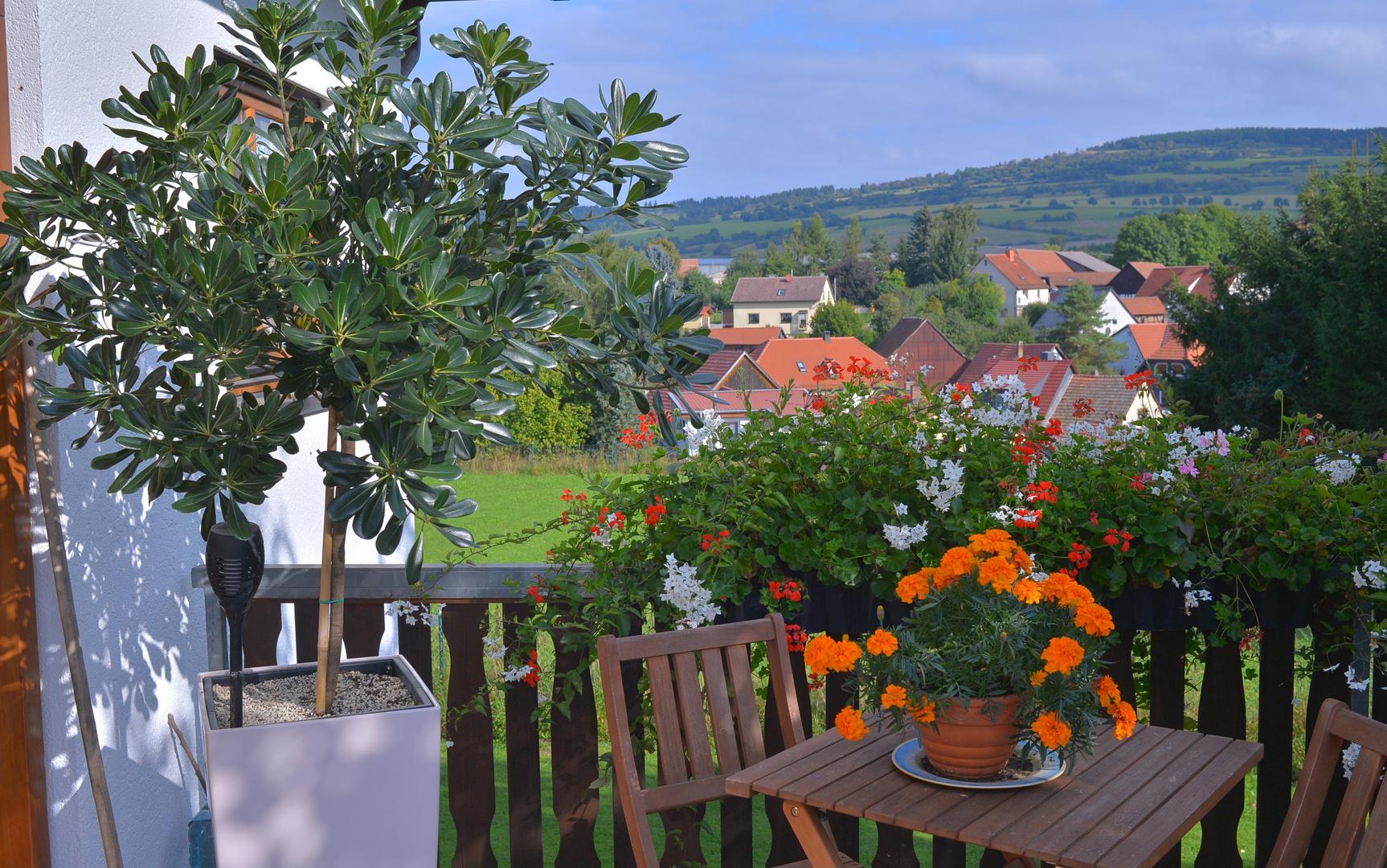 an unserem Hauseingang (en la entrada de nuestra casa)