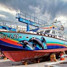 Ana, bus maritime