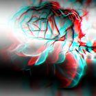 Anaglyphe-Rose