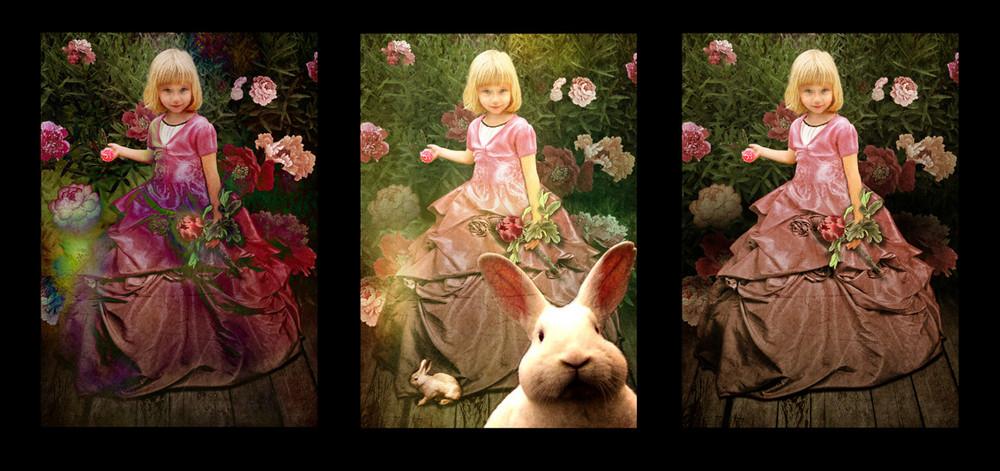 Anastasia nel paese delle meraviglie