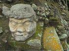 Anciano Maya