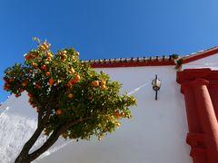 ......andalusische Orangen