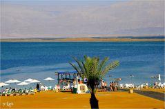Anfach Morgen bei Toten Meer