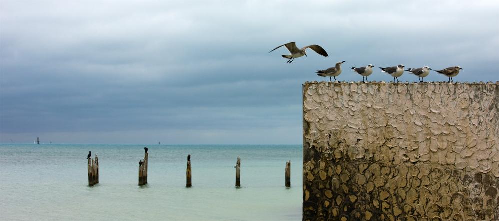 Anflug auf Key West
