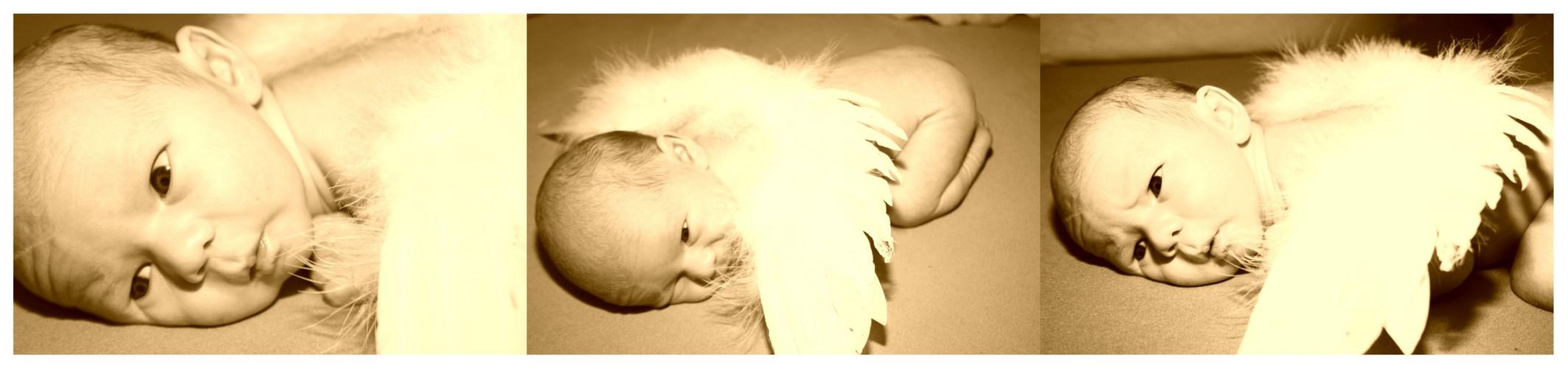 Angel on earth,....