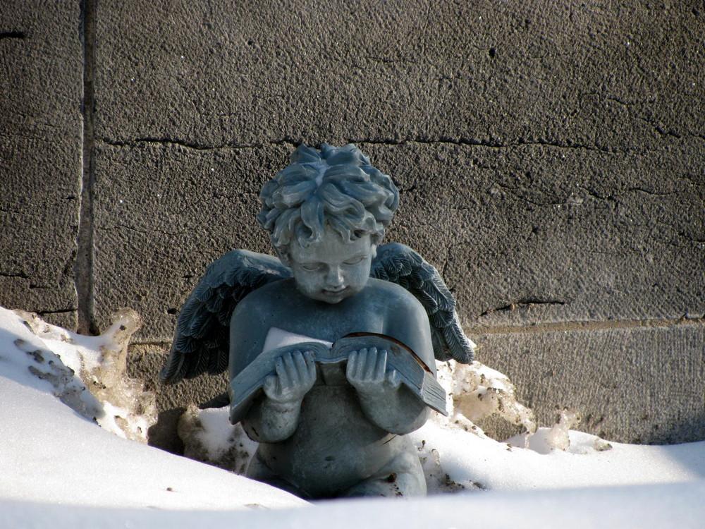 Angel reading