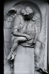 . . . angelus morti . . .