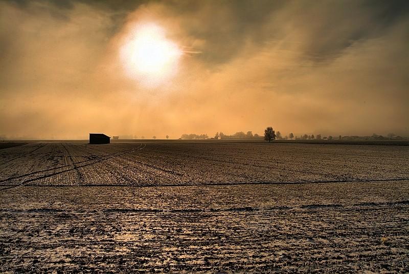 angereifte Landschaft im Nebel bei Pietling