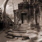 Angkor Wat (3): Ta Prom