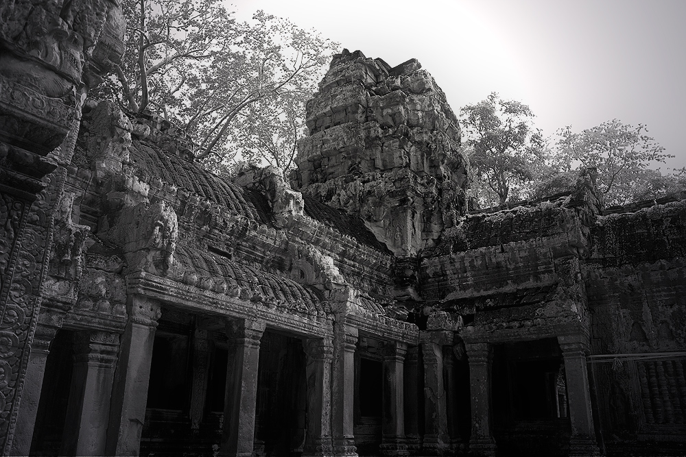 Angkor Wat - Tha Prohm 2