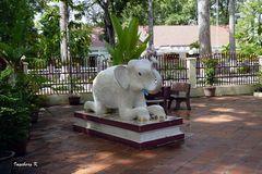 Angkor Watt  -  Im Garten des Klosters