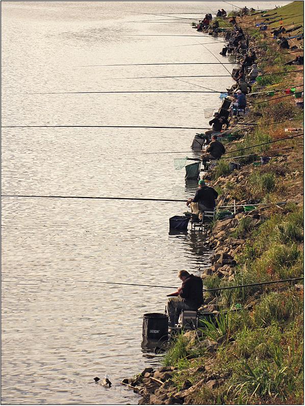 Angler .... viele ...!