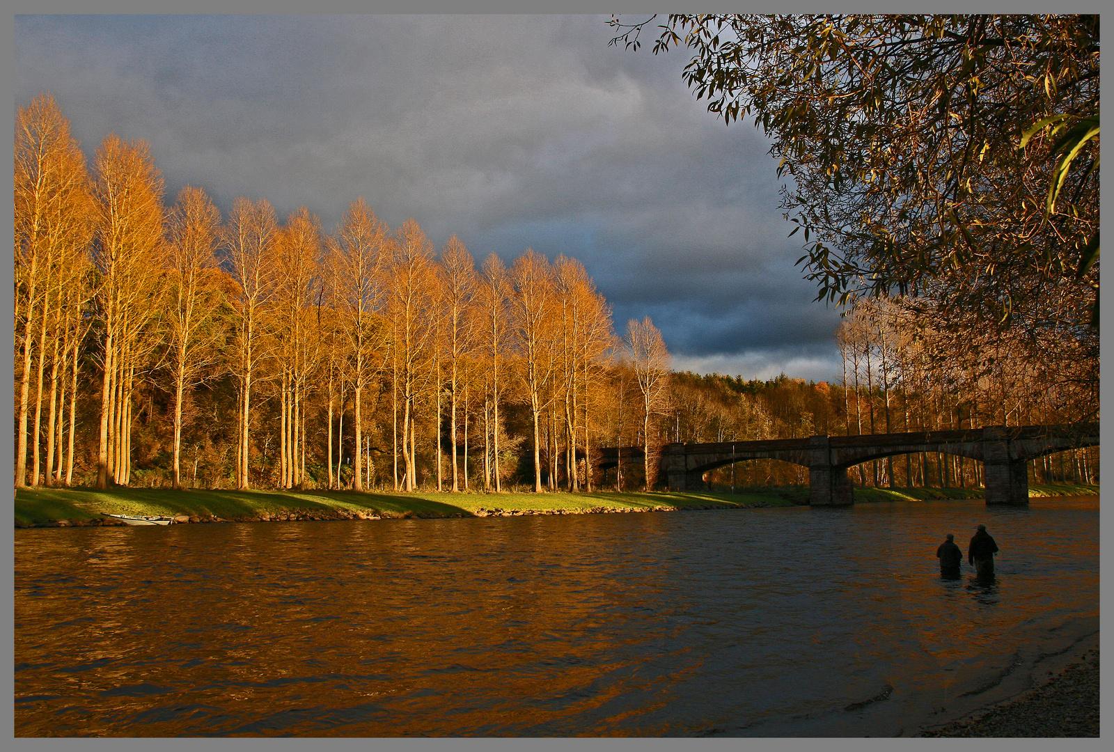 anglers in the River Tweed at mertoun bridge