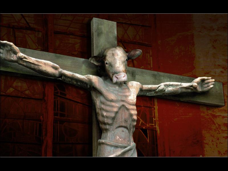 :: ANIMAL JESUS ::