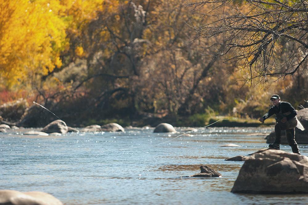 Animas River - Colorado